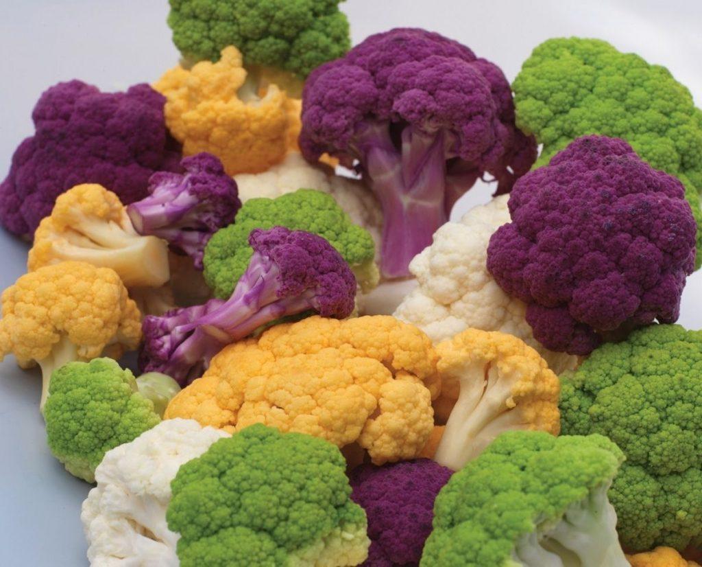Oranje en paarse bloemkool en spruiten nieuwe groenterassen.