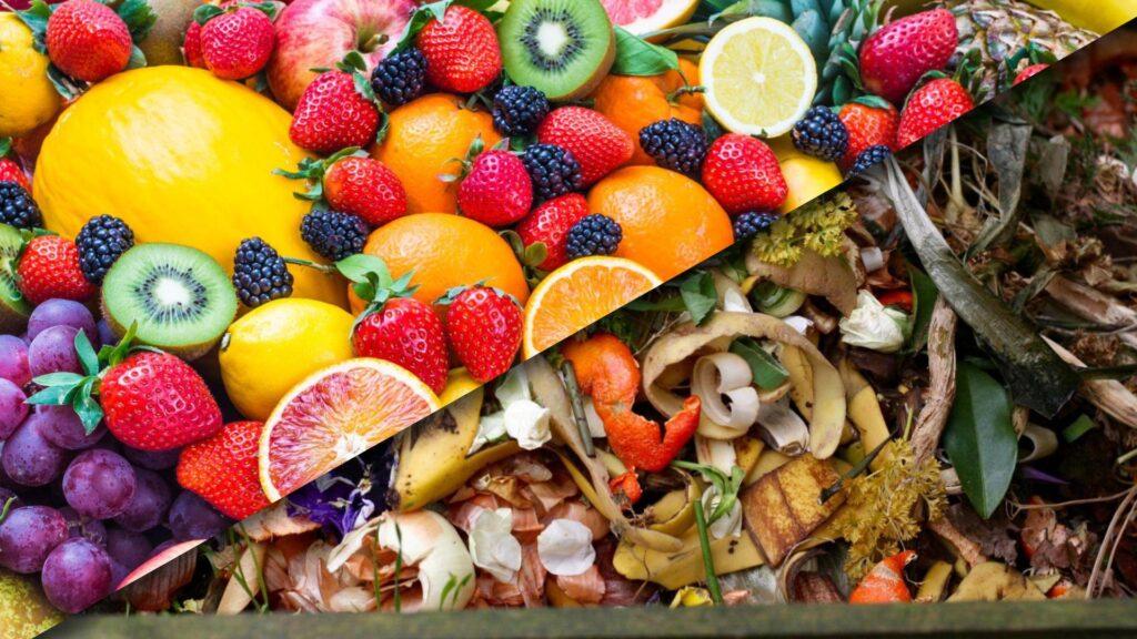 combating food waste in agrologistics