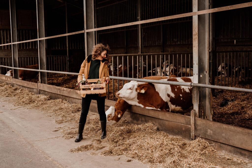 Pauline platteland met koeien